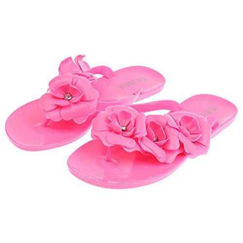Gazechimp Zapato Plano de Mujeres Sandalias de Bohemia Pantuflas de Vacaciones Accesorio de Viaje de Playa de Hotel 5 Colores y 6 Tallas Rosa