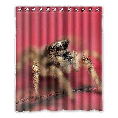 Personal Custom I arañas disfraz cortina de la ducha Shower ...