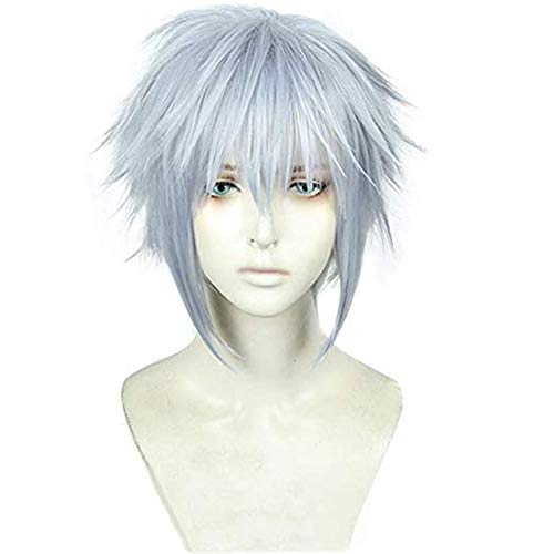 Xingwang Queen Anime Short Straight Silver Gray Cosplay Wig Men Boys' Party Wigs for Christmas Halloween]()