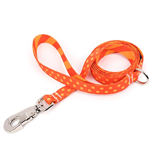 Buttonsmith Orange Dots Dog Leash, 5 ft Length, Large Width - Fadeproof Permanently Bonded Printing, Extra Heavy Duty Quick Clasp, Resistant to Odors & Mildew, 100% Made in USA