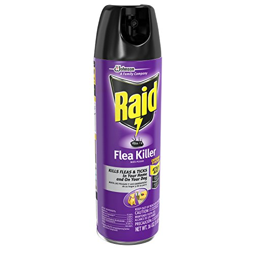 Raid Flea Killer For Home And Dogs