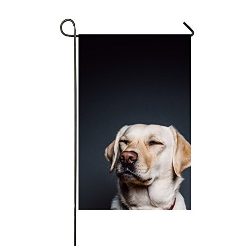 Dimanzo Welcome Garden Flag Animal Collar Dog Double-sided,