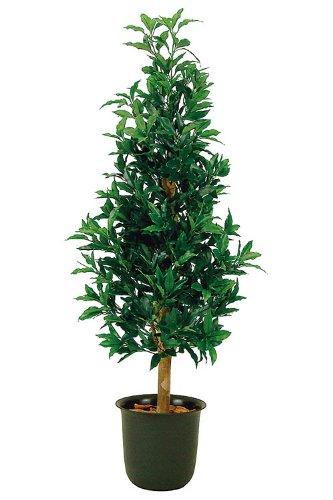光触媒加工 天然木使用 人工観葉植物 ニューローレルタワー 高さ150cm 7号鉢 消臭/抗菌/防汚 059-0005 B007RUYBBU   高さ150cm 7号鉢