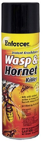 Instant Knockdown Enforcer EWHIK16 Wasp And Hornet Killer, 16 Oz, Aerosol Can, Liquid, Light (Bee Wasp Spray)