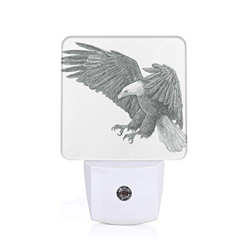 Colorful Plug in Night,Black and White Pencil Drawing Style Eagle with Detailed Features Wild Nature,Auto Sensor LED Dusk to Dawn Night Light Plug in Indoor for Childs -