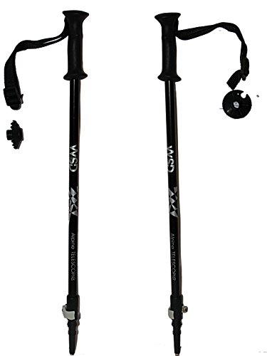 Buy adjustable ski poles