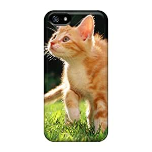 Doompson EsysAAK6495iqfdq Protective Case For Iphone 5/5s(orange Tabby Kitten)