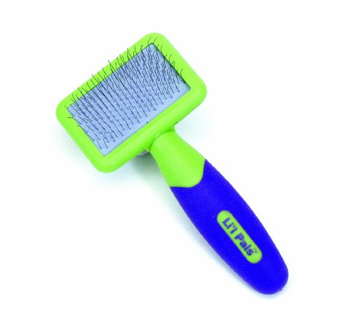 Li'l Pals Kitten Slicker Brush with Coated Tip Pins