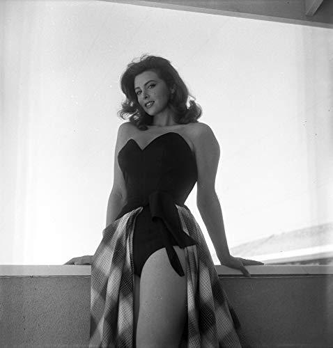 Celebrity Vault Tina Louise - Window Pinup, an Archival Print - 20