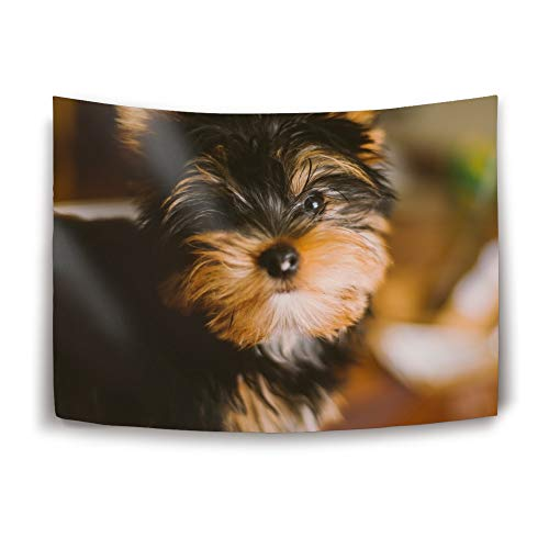 Mweet Tapestry Large Size Tapestry Wall Hanging Dorm Decor Yorkshire Terrier Tapestry Bedding Hippie Wall Hanging Bed Cover Picnic Blanket Curtain