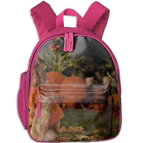 (3D Dog Dressed As A Pumpkin Backpack Book Bag School Backpacks Travel Bags for)