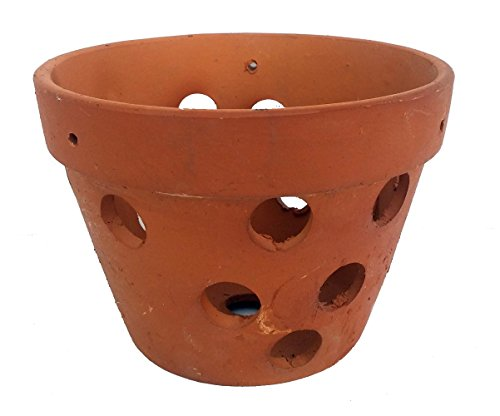 Terra Cotta Orchid Pots - Hand Made Terracotta Clay Orchid Pot - 4.5