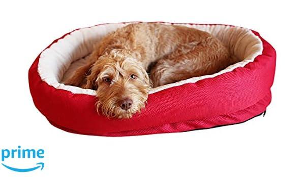 Rosewood - Cama ortopédica 40 Winks, 66 cm: Amazon.es: Productos para mascotas