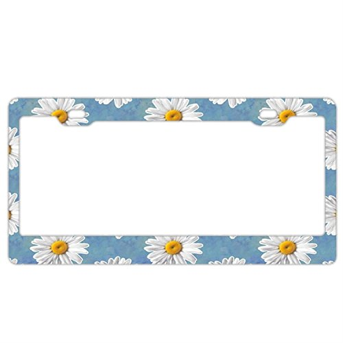- FunnyLpopoiamef Stainless Steel License Plate Frame Retro Daisy Flowers,Waterproof License Plate Covers Elegant Car Plate Frame Car Tag Frame