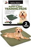 """Millie Mats Washable Dog Training Pee Pads 2 Pack. Leak Proof to Protect Floors, Bed, Crate from Pee Accidents. Absorbent Indoor Potty for Puppies. Use for Incontinent, Senior or Sick Dogs. 28"""" x 31"""""""