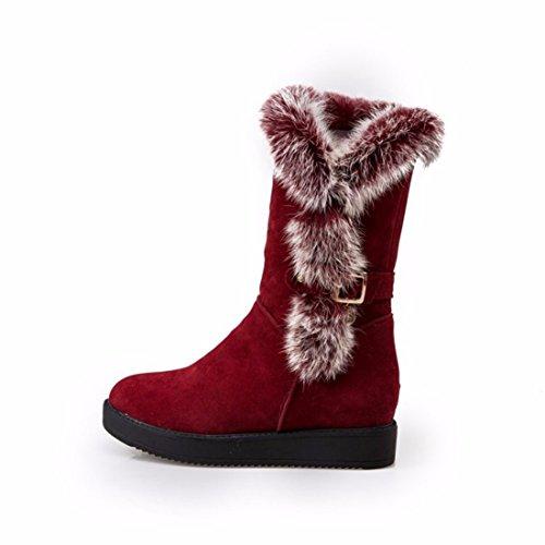 RFF-Womens Shoes Coton DHiver Chaussures Bottes Talons Hauts Tube Pente avec Martin Bottes Bottes,36,DE Gueules