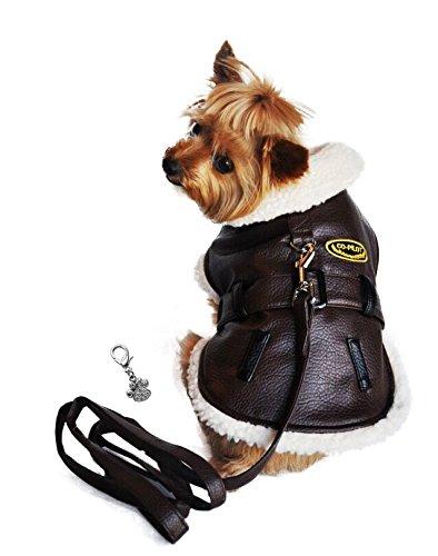 Doggi (Matching Dog Costumes)