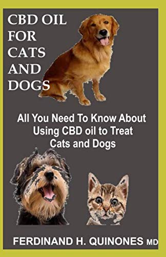 CBD OIL FOR CATS AND DOGS: All You Need To Know About CBD Oi