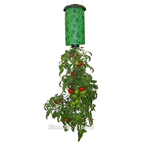 - LALABOXI Home Yard Garden Tomato Planter Topsy Turvy Upside Down Upside-Down Plant Pot Gardening Planting Vegetable and Flower