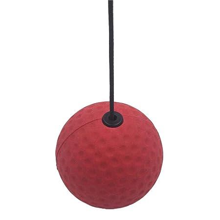 rebirthesame - Balón de Combate Deportivo para Reflejo de ...