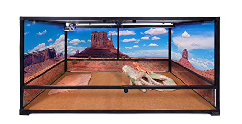 Carolina Custom Cages Terrarium, Tall Extra-Long Deep 48Lx24Dx24H, Easy Assembly (Best Ball Python Enclosure)