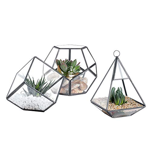 Whole Housewares Glass Geometric Terrarium Container 5.4X4.7inch, 3.8X3.8inch and 4.1X6.4inch Tabletop for Succulent & Air Plant (Black, 3 Asst) (Terrarium Plants And Containers)