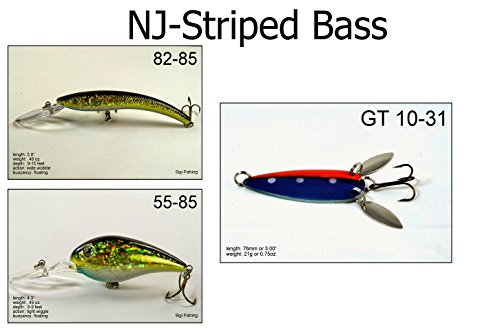 Akuna [SB3A] Pack of 3 fishing lures for Striped Bass for USA 50 states (New Jersey)