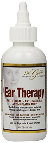 Syn Med Golds Ear Therapy 4oz (Pack of 2) (Dr Gold Ear Therapy)