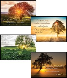 Art Box Card - Card-Boxed-Be Still And Know Assorted Sympathy (NIV) (Box Of 12)