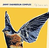 Life Begins Again by Jimmy Chamberlin Complex (2005-02-02)