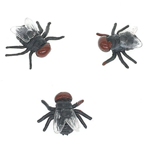 Cooplay 20pcs Fake Fly Flies Bug Plastic Mock Insects Reptile Joke Toys Prank Scary Trick Tricky Brains For Halloween (Scary Halloween Office Pranks)