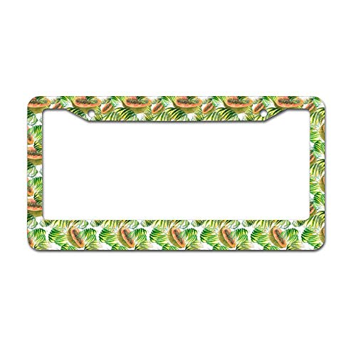 - DKISEE Abstract Papaya License Plate Frame Aluminum Car License Plate Covers with 2 Holes 12