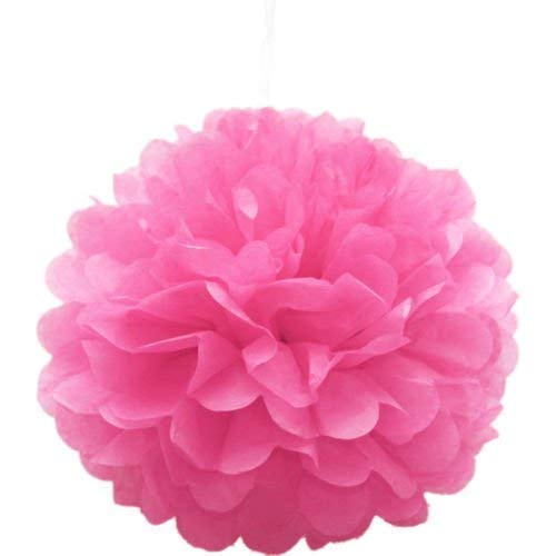 18pcs Tissue Hanging Paper Pom-poms, Flower Ball Wedding Party Outdoor Decoration Premium Tissue Paper Pom Pom Flowers Craft Kit(Pink & White)) by Nature World (Image #6)