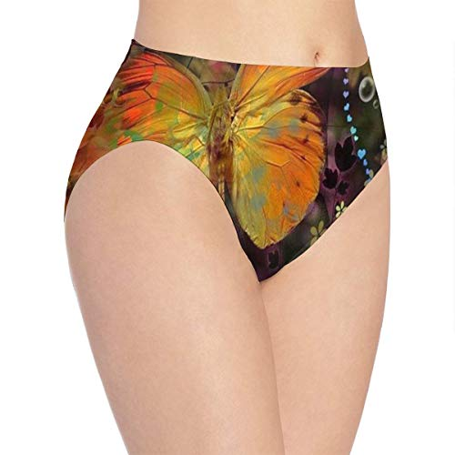 Womens Underwear Butterflys Heart Colorful Great Bikini Brief Hipster Panty