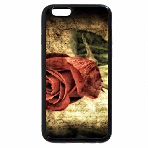 iPhone 6S / iPhone 6 Case (Black) Red Rose