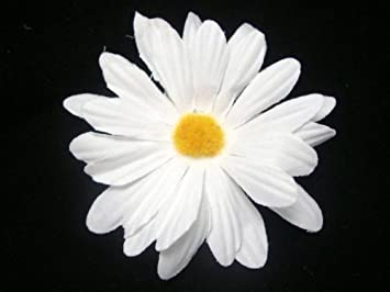 Amazon small white daisy hair flower clip beauty small white daisy hair flower clip mightylinksfo