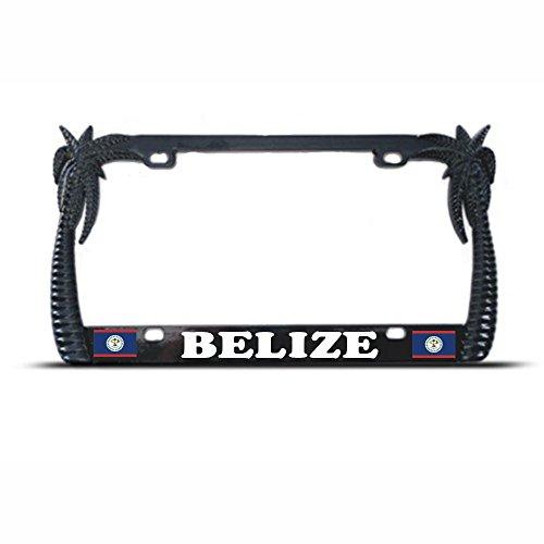Black Metal Palm Tree Belize Flag Tropical License Plate Frame Tag Border Perfect for Men Women Car garadge Decor