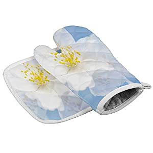 Traasd11an - Guanti da forno e presine, motivo fiori di gelsomino, fondo blu, resistenti al calore, antiscivolo, per… 413t1 dWwIL. SS300