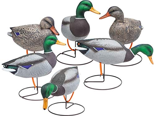 Final Approach FA Gunners HD Field Mallard Decoys, 6 Pack
