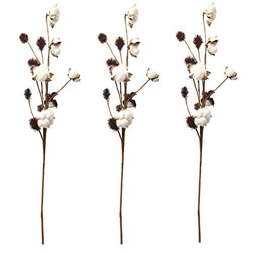 Aisamco 3 Pack Cotton Stems Farmhouse Decoration Floral Picks Rustic Style Vase Filler Rustic Cotton Branches 26.8 Per Stem Decoration Flower