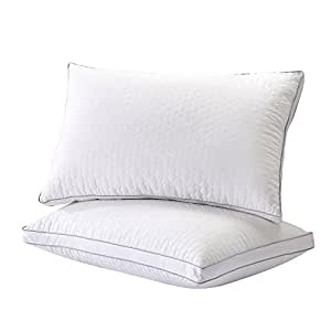 Amazon Com Gt Road Silk Bed Pillows For Sleeping Dust