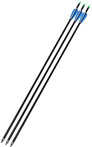 Victory Carbon Fibre Arrow (S)(Pack of 3)
