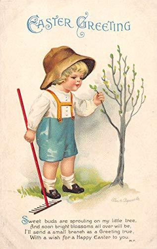 Easter Greetings Boy with Tree Clapsaddle Vintage Postcard JA4741449