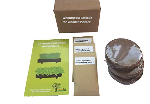 Organic Wheatgrass 3 Pack Refill - Pre-Measured Soil & Seed. Use with Peach Tree Farm's Beautiful Wooden Microgreen Trays Measuring 16