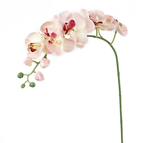1-Piece-Simulation-Butterfly-Orchid-Artificial-Flower-Plant-Home-Decoration