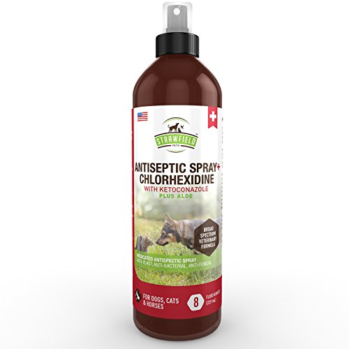 Chlorhexidine Spray for Dogs