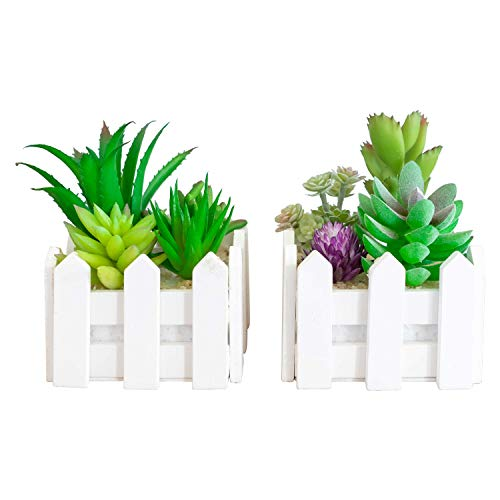 (Set of 2 Assorted Decorative Faux Succulents, Artificial Potted Plants for Home or Office, Medium)