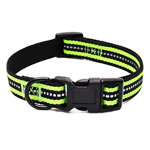 "Mile High Life Night Reflective Double Bands Nylon Dog Collar (Lime Green, Small Neck 11""-15"" -20 lb)"