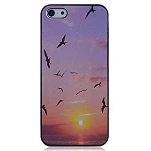 GONGXI Lureme The Setting Sun Back Case for iPhone 5/5S
