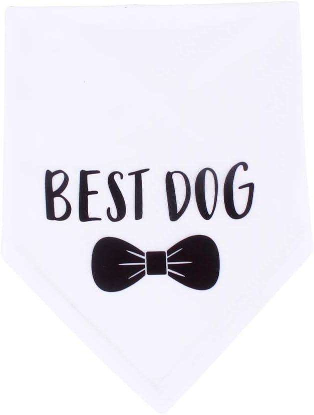 Wedding Photo Prop HDGDT Best Dog Bandana Wedding Dog Bandana Bridal Party Dog Bandana Pet Accessories Pet Scarf